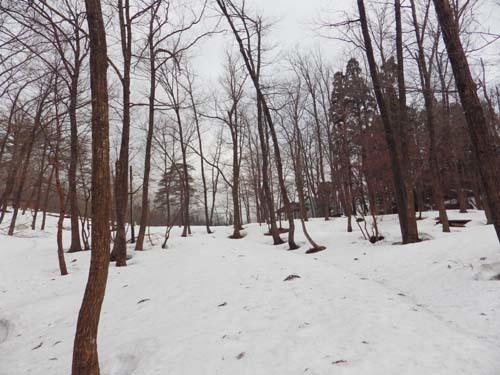 20170404 林内残雪