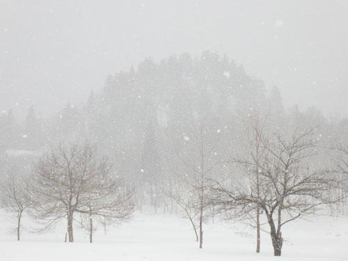 170224雪2