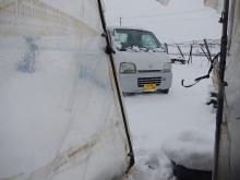 雪の再来 (2)