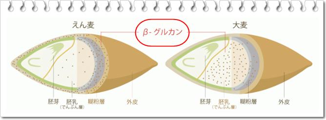 えん麦のちから β-グルテン