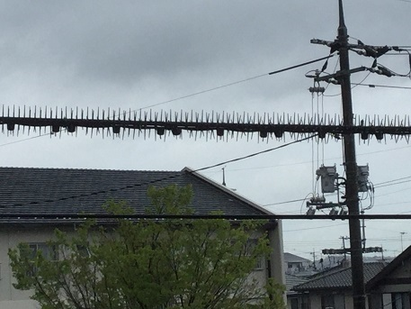 鳥がとまる防止