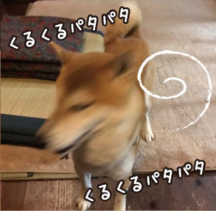 170221_3.jpg