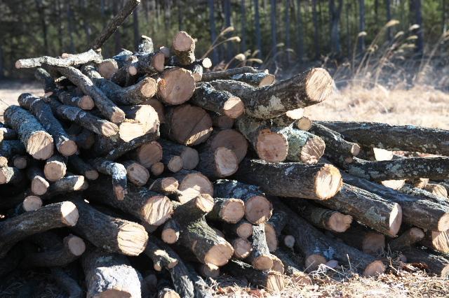 薪ストーブ用の薪作り-01