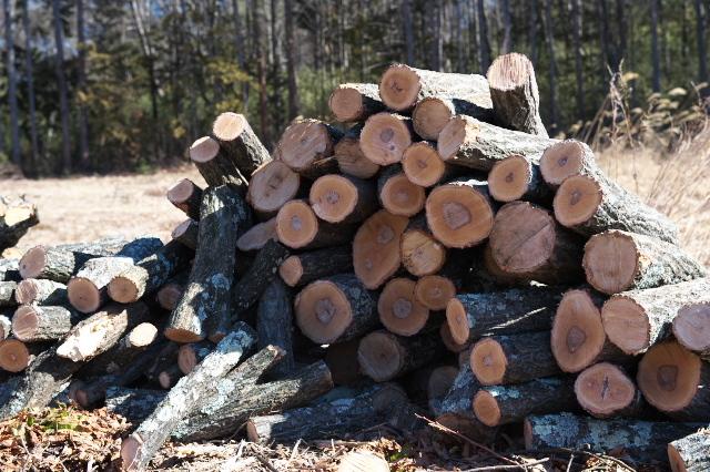 薪ストーブ用の薪作り-03