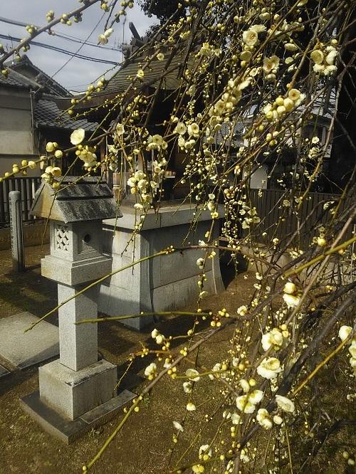 華表神社の天満宮