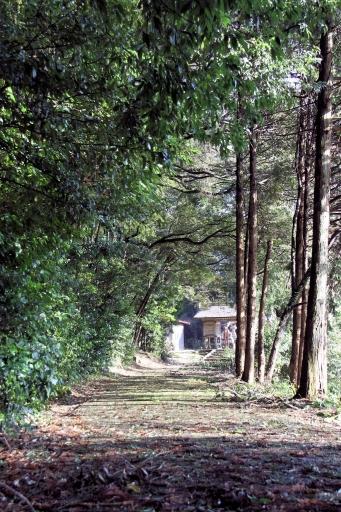 賀茂神社の参道