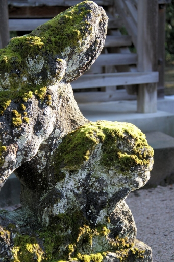 賀茂神社の狛ワンコ