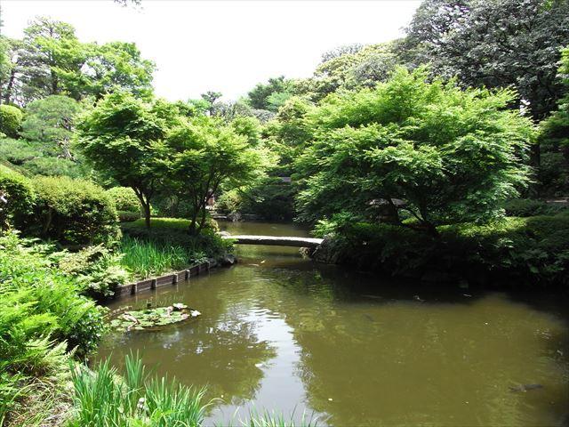 池田山公園.3