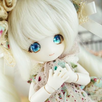 2017-4-whitevanilla-02-b.jpg