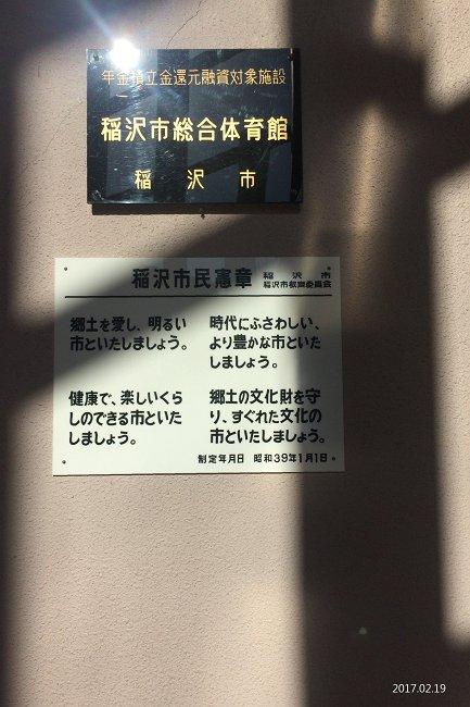 IMG_4684-T.jpg