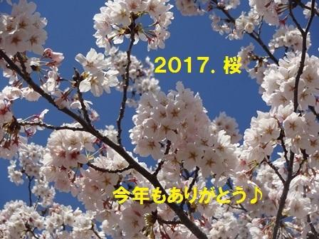 20170419111607da3.jpg