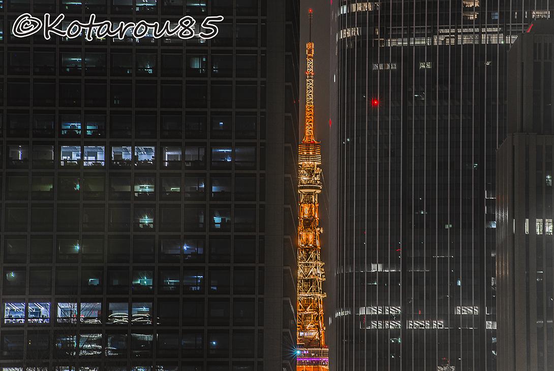こんばんは、東京タワー 20170326