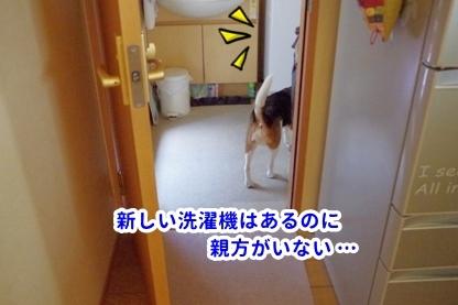 洗濯機 3
