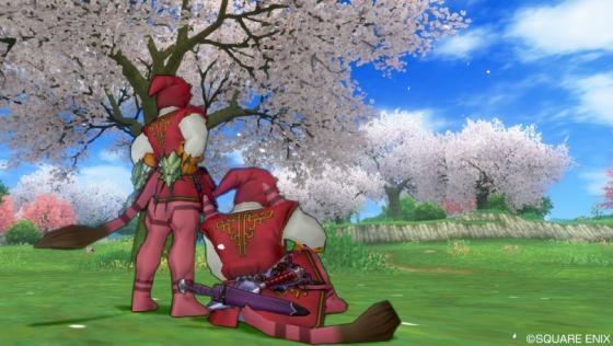 219筋肉桜①