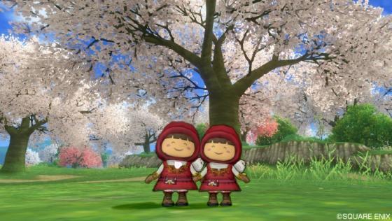 219姉妹桜