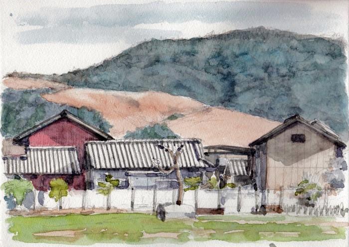 奈良の若草山 (700x496)