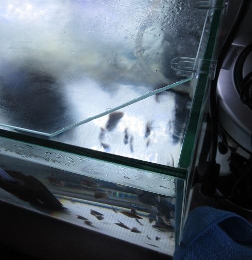 ⑥蓋加工後 水槽へ設置