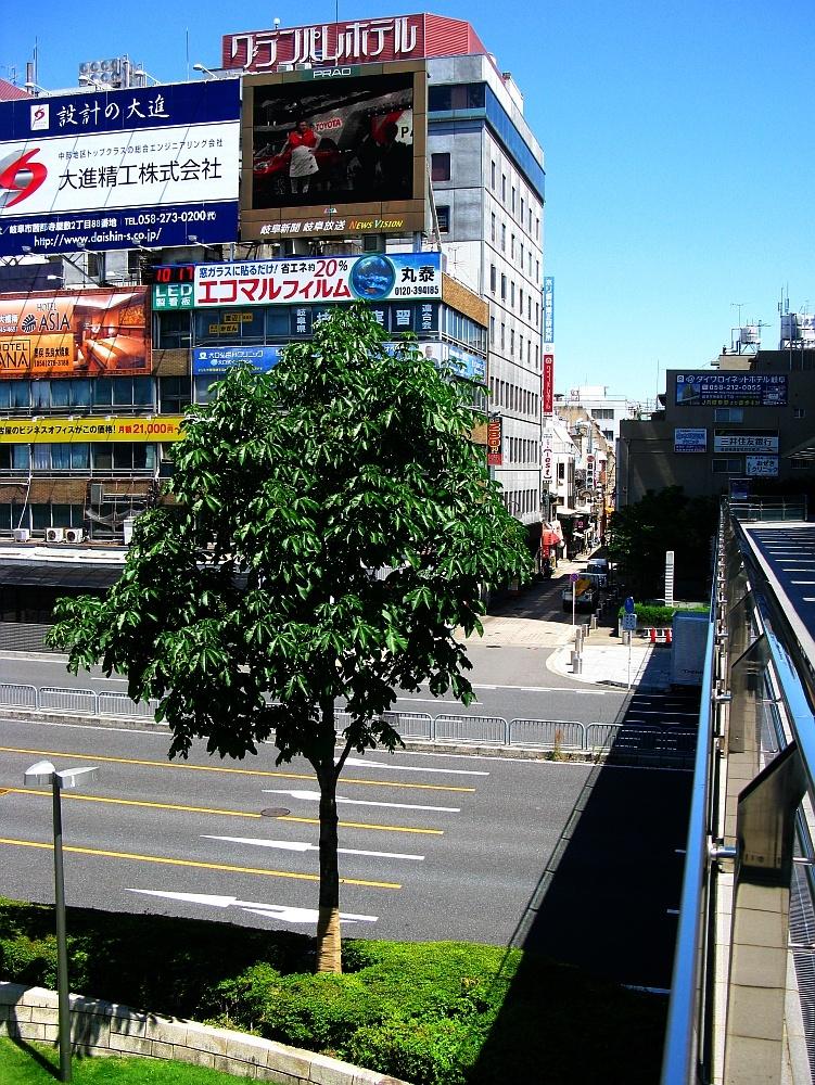 2016_05_18岐阜:中華料理 東萬 (1)