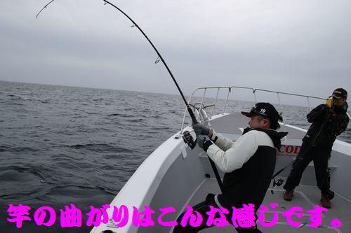 3A6A2678.jpg