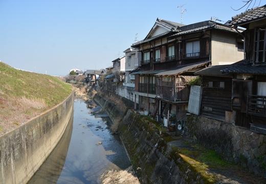 170216-124622-京都20170217 (875)_R