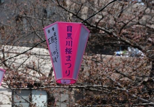 170325-105511-池尻・中目黒 (330)_R