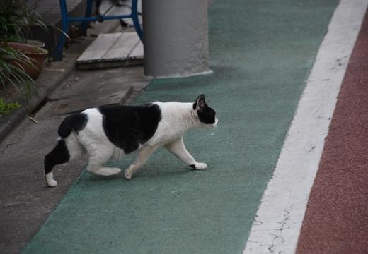 170325-122459-池尻・中目黒 (467)_R