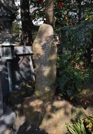 170404-143230-桜201702 (296)_R