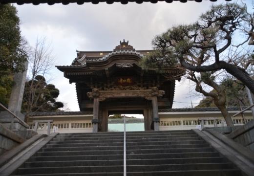 170211-164835-鎌倉20170211 (500)_R