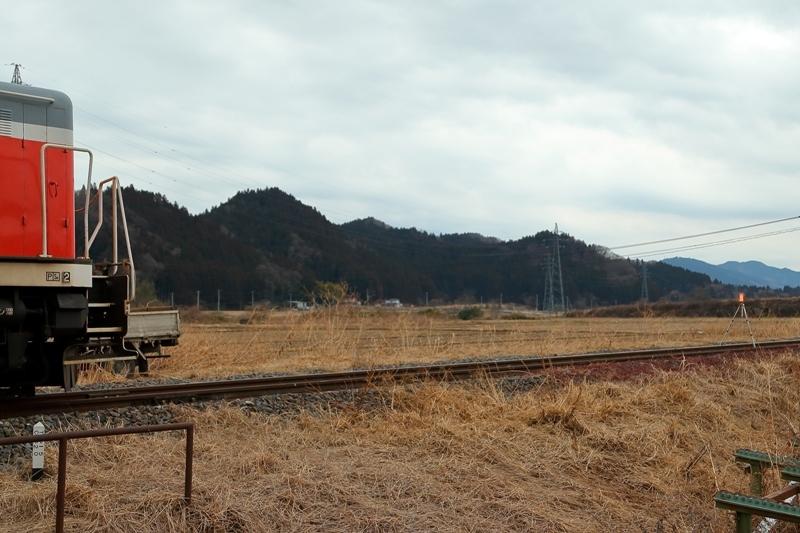 torioroshi_290205_2a.jpg