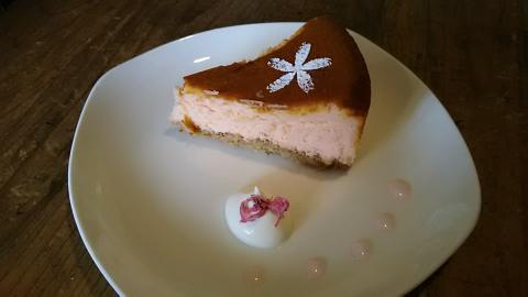 カフェ1001桜チーズケーキ (1)