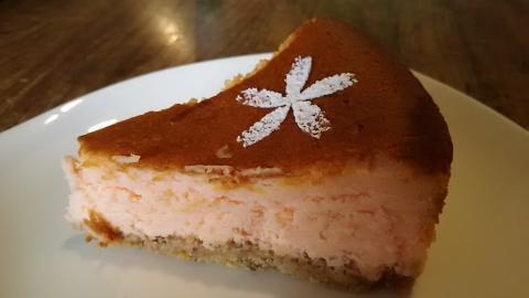 カフェ1001桜チーズケーキ (2)