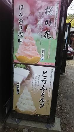 桜の花アイス (1)