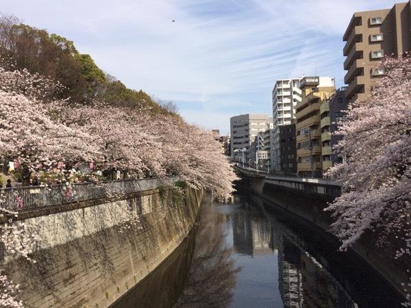 201704-01edogawa2.jpg