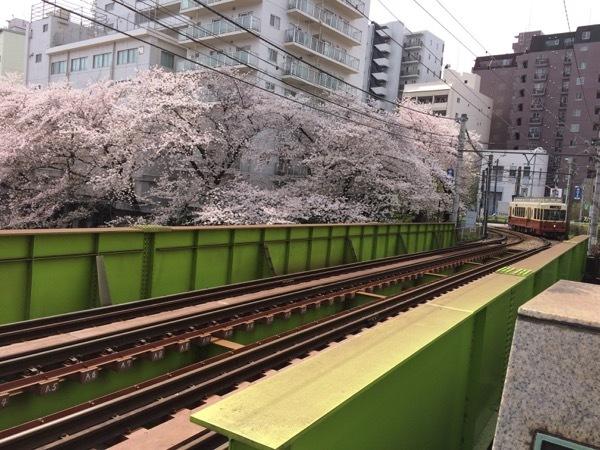 201704-01takadobashi2.jpg