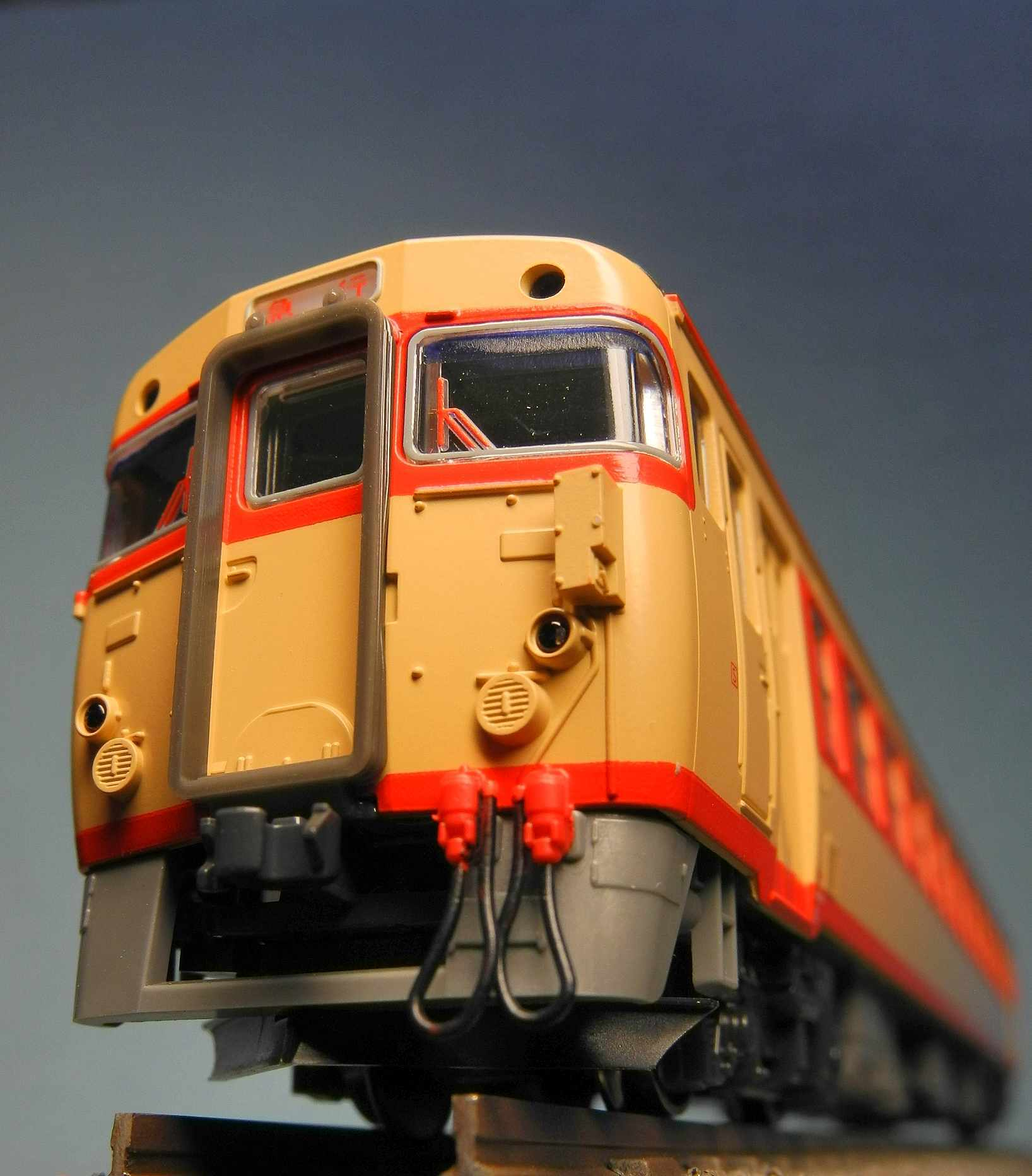DSCN8800-1.jpg