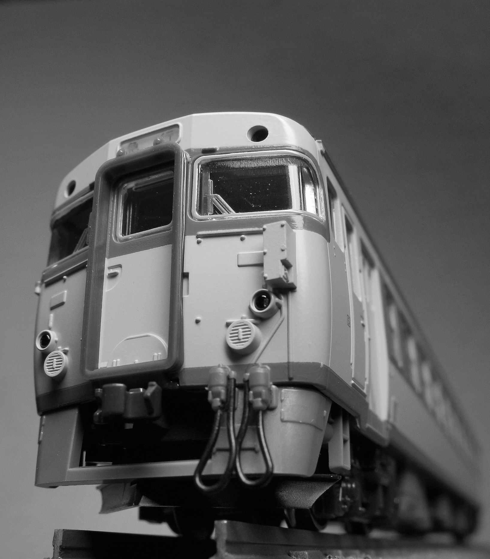 DSCN8800-2.jpg