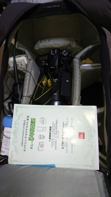 DSC_0243_01.jpg