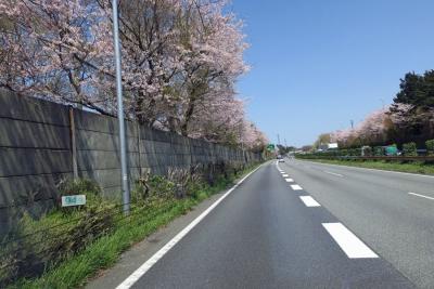 17_4_15富士山4