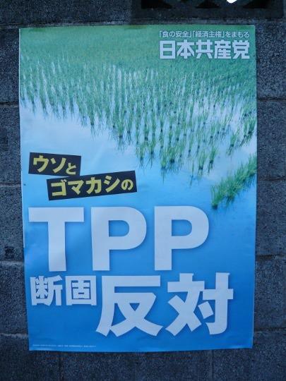 政党ポスター⑤P1110569