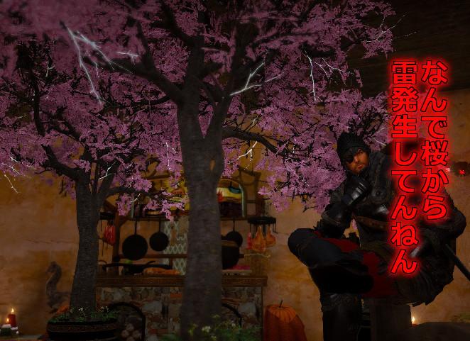 桜伐採ダメ絶対