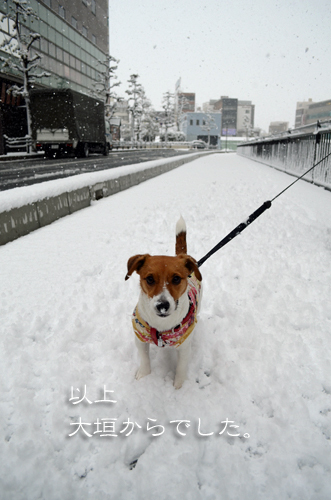 2017-02-11-雪-036