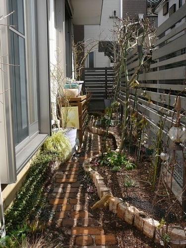 南の庭 植え込み完了