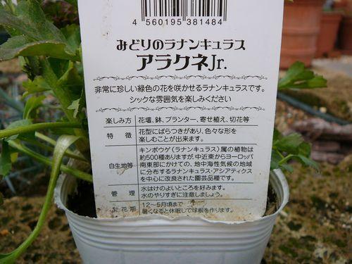 T-Gardenさんへ