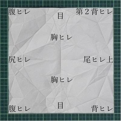 H_000.jpg