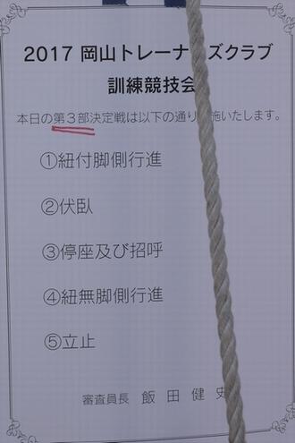 20170225 (5)