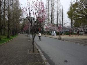 長居公園 (9)