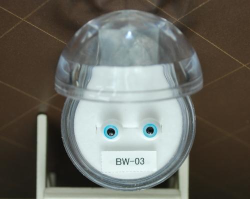BW-03.jpg
