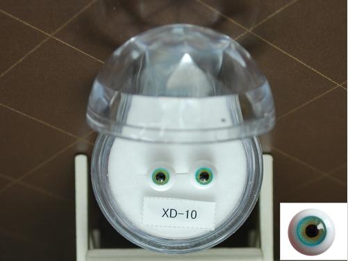 XD-10.jpg