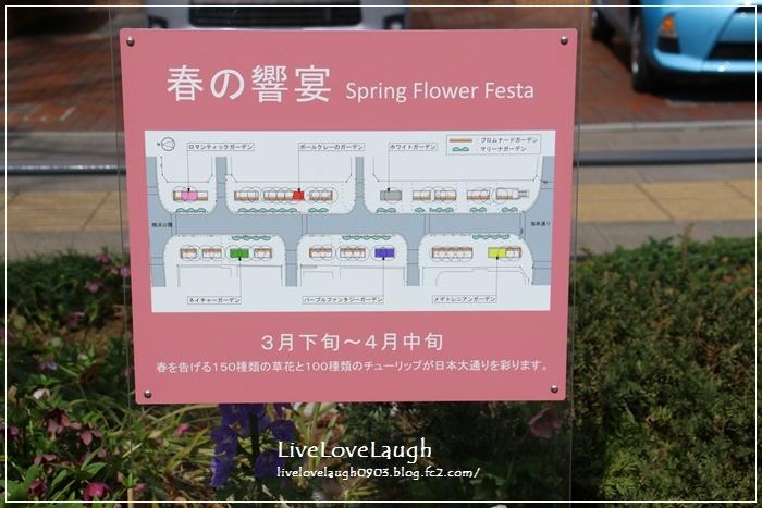 IMG_9024日本大通り7