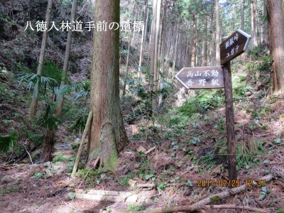 八徳入林道手前の道標